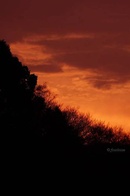 2012-03-08_052.jpg